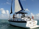 Downtown Miami - sailing charter