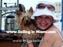 Miami pet friendly sailing charter