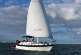 sail boat charters on Miami Boat Show Strictly Sail